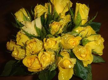 Желтые цветы: к чему дарят