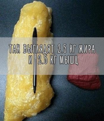 Правила, которых стоит придерживаться всем, кто решил похудеть