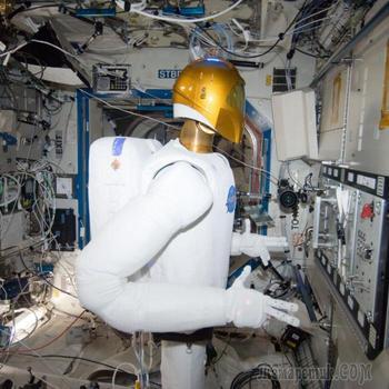 Научная фантастика или реальность: на какие странные эксперименты решаются ученые