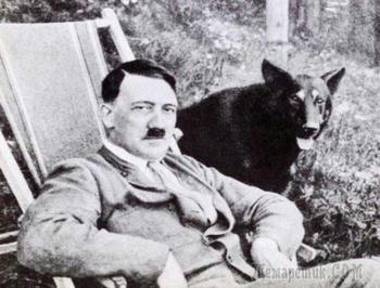 Фотография Несси и дневники Гитлера: 5 самых успешных мистификаций в истории