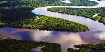 Куда впадает река Амазонка?