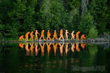 Муравьиный лес и говорящие звери. Куда дальше пойдёт эволюция