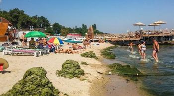СМИ: на одесские пляжи надвигается экологическая катастрофа