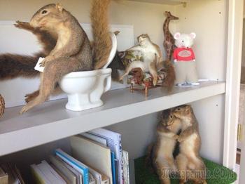 20 смешных случаев, когда люди находили действительно странные вещи в доме своих родителей