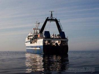 Как я бросил всё ради работы на морском судне