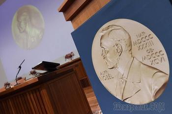 За что вручают Нобелевскую премию