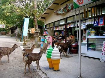 """Нара - город в Японии, """"оккупированный"""" оленями"""