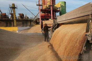 Российский регион почти вдвое увеличил объем экспорта