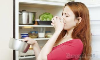 Экология в быту для здоровой жизни - советы по созданию экологии вашего дома