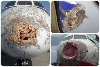 Фотографии, которые ниодин пассажир самолета нехотел быувидеть после своего приземления