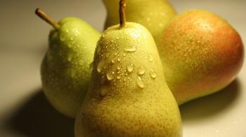 Описание груши сорта «Вильямс»: характеристики сорта