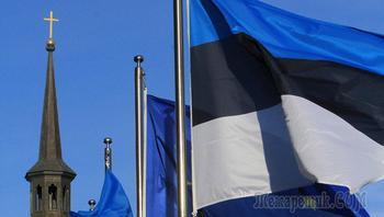 Почему я выбрал Эстонию? История одного петербуржца