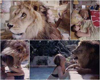 Лев в качестве домашнего питомца