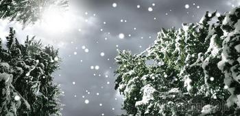 Снегопад (Стих)