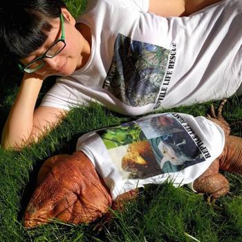 Тегу - огромная ящерица, которая может стать альтернативой домашним питомцам