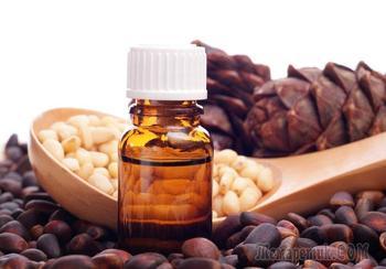 Масло кедровое и живица: полезные свойства