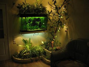 Оформляем аквариум своими руками: советы дизайнеров по украшению и оформлению