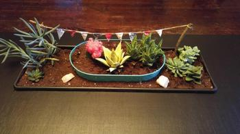 Журнальный столик с настоящим мини-садом