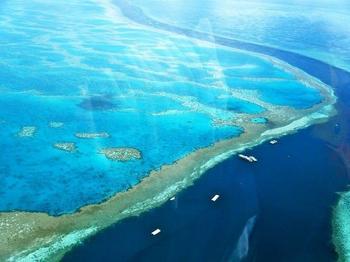 Факты о Большом Барьерном рифе