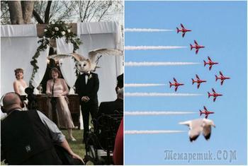 17 фотографий с двойным смыслом, к которым стоит присмотреться повнимательнее