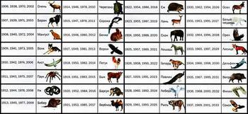 Как узнать свое тотемное животное и встать под его защиту?