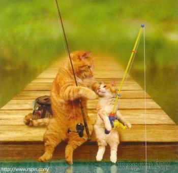 Это поймут не только рыбаки. Часть 4
