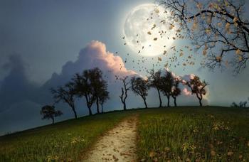 Растущая Луна в сентябре 2018: что нельзя и что можно делать до Полнолуния