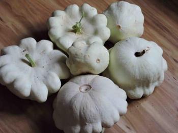 Особенности выращивания патиссонов — советы и рекомендации