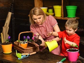 Грядка юного ботаника – 7 растений, которые можно вырастить вместе с детьми