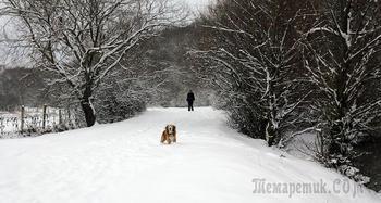 Два дня после рождества. 8-е января. Крым. Водопад Сууч-Хан