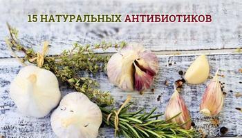 Натуральные антибиотики: 15 лучших природных средств