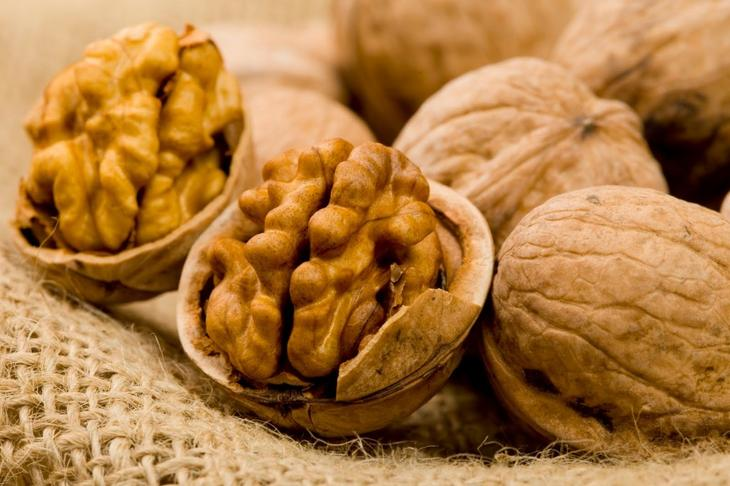 Грецкий орех. Фото
