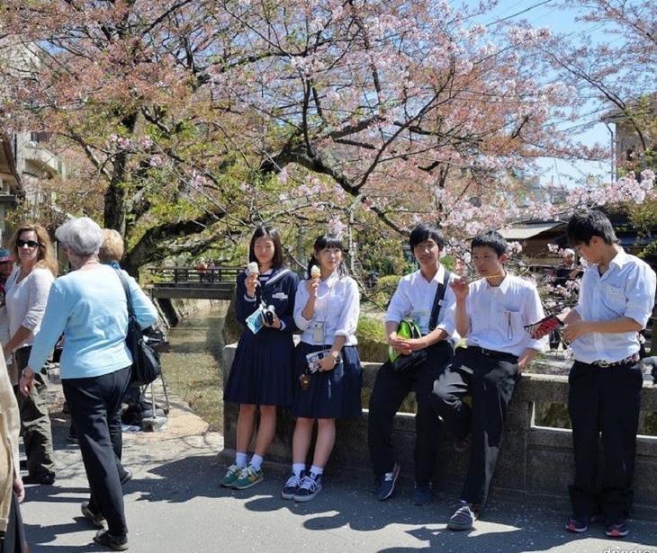 Япония: любование природой дети, уроки, школа