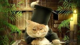 Монолог кота (Стих)
