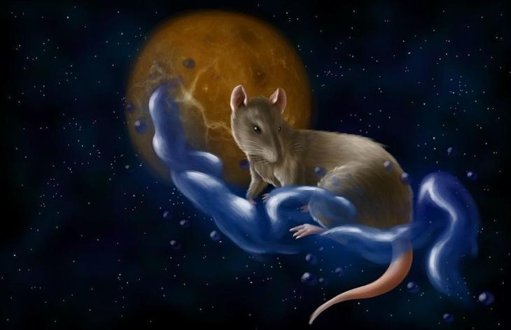 Знак зодиака крыса телец женщина