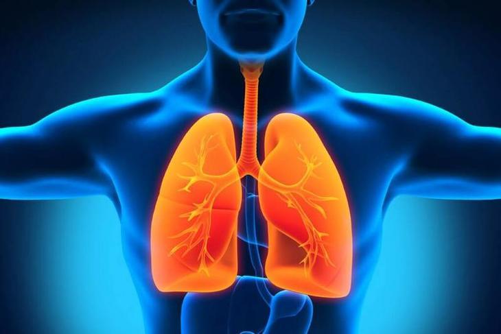 4 домашних средства для укрепления легких и улучшения дыхания