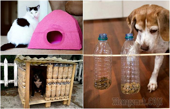 15 поделок для домашних любимцев, которые можно легко сделать самому