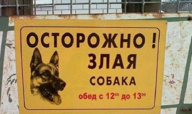 19 убойных табличек, предостерегающих от злых собак