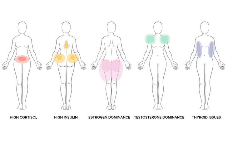 Как договориться с гормонами, которые не дают ПОХУДЕТЬ