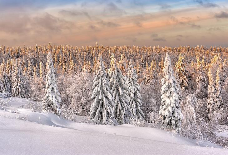 Фотограф Владимир Чуприков. Зима и её причуды