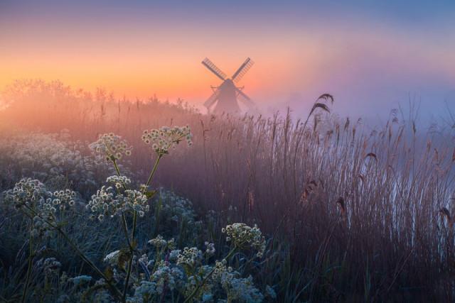 Красота Нидерландов в пейзажных фотографиях Альберта Дроса