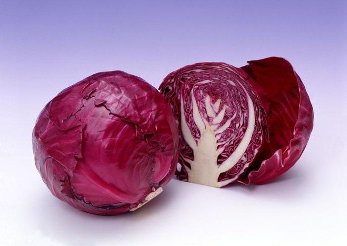 Красная капуста: польза и вред, лечебные свойства для организма человека