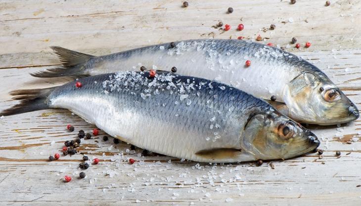 Приснилось соленая рыба. соленая рыба что это значит