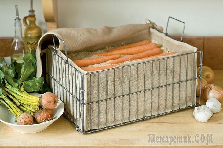 Хранение моркови на зиму: лежкие сорта, когда выкапывать, как хранить в подвале, в домашних условиях, сроки хранения