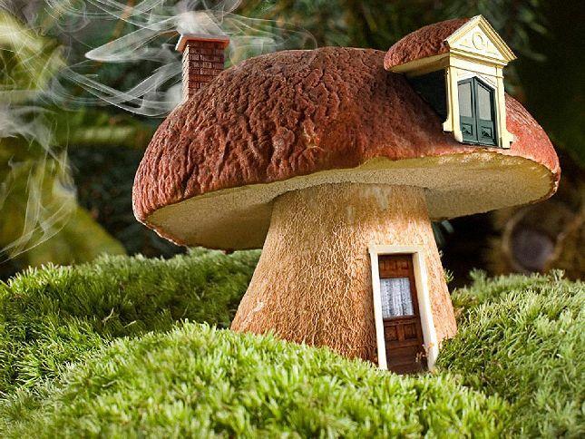 домики грибы фото выставке было