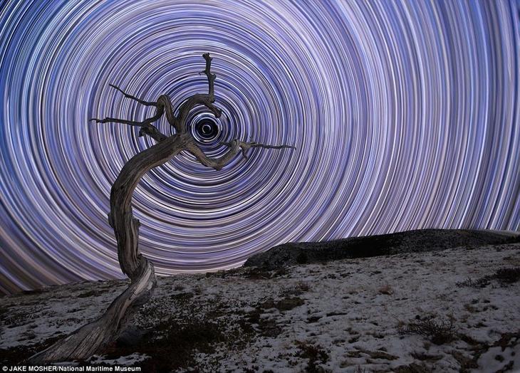 Звездный тайм-лапс с полярной звездой по центру. Джейк Мошер, США астрономия, конкурс, космос, красиво, лучшее, планеты, фото, фотографы
