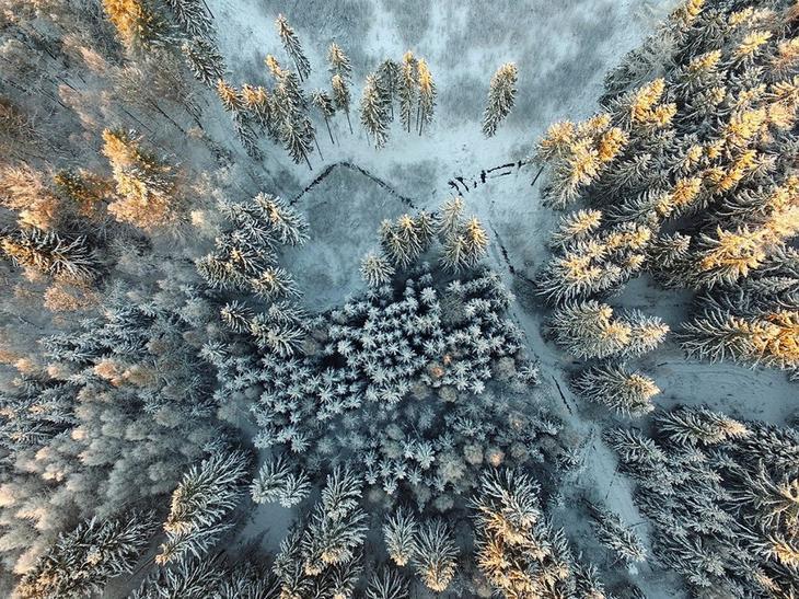 Krasota prirody Siena International Photography Awards 14