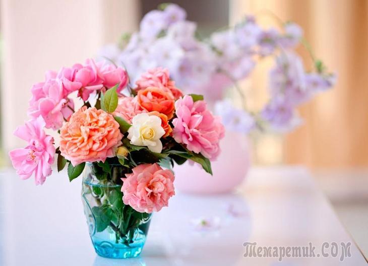 Что добавить чтобы розы стояли в вазе дольше