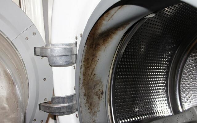 Как и чем почистить резинку в стиральной машине автомат от накипи, грязи, плесени и запаха