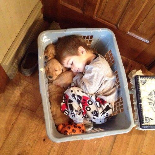 Очаровательные парочки: малыши, спящие в обнимку со своими собаками